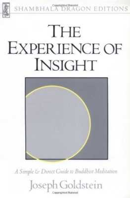 The Experience of Insight