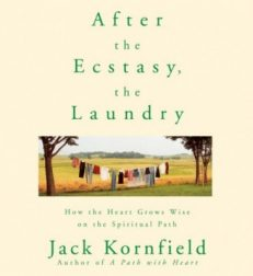 After The Ecstasy, The Laundry – CD