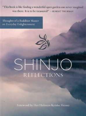 Shinjo Reflections