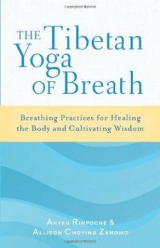 The Tibetan Yoga of Breath