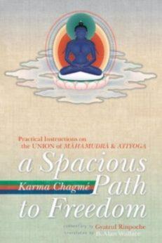 Spacious Path to Freedom