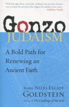 Gonzo Judaism