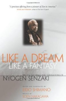 Like A Dream, Like A Fantasy