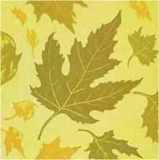 Seasons Of Change – Floating Leaves