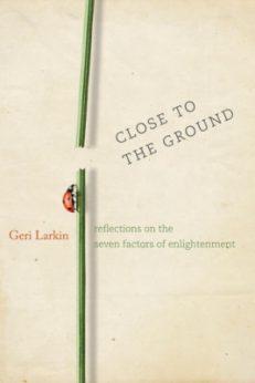 Close to the Ground