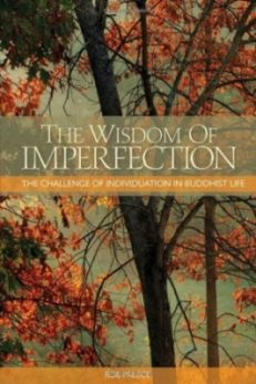 Wisdom of Imperfection