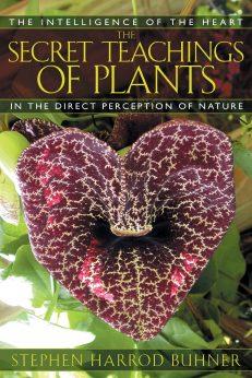 Secret Teaching Of Plants