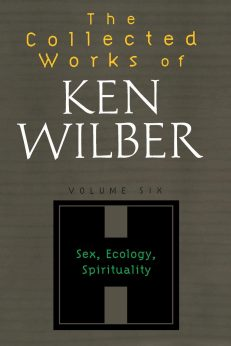 Collected Works Of Ken Wilber, The – Vol 6 – PB