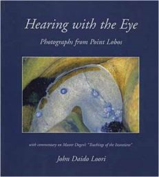 Hearing with the Eye