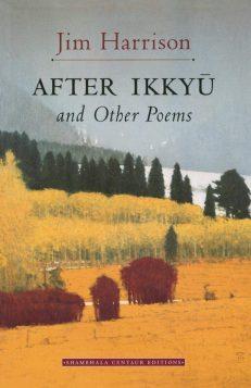 After Ikkyu