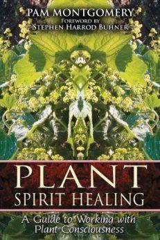Plant Spirit Healing (NEW)