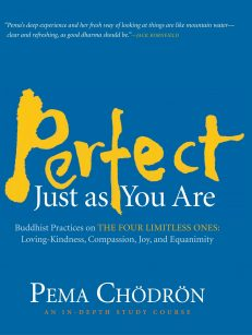 Perfect Just As You Are 8-CD Box