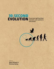 30 Second Evolution