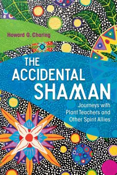 Accidental Shaman, The