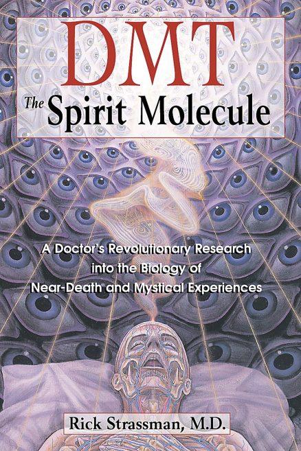 DMT – The Spirit Molecule