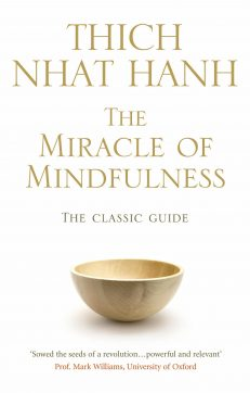 Miracle Of Mindfulness, The