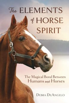 Elements Of Horse Spirit, The