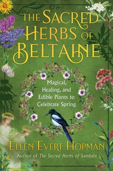 Sacred Herbs Of Beltaine, The