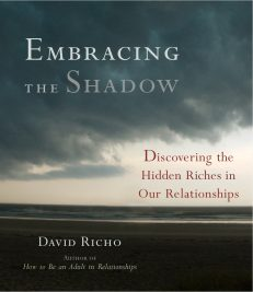 Embracing The Shadow